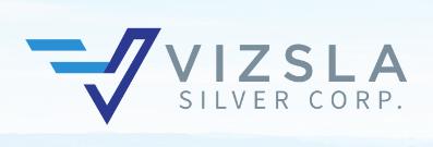 Vizsla Silver